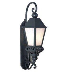 Reviews Phillipstown 1-Light Outdoor Wall Lantern By Alcott Hill