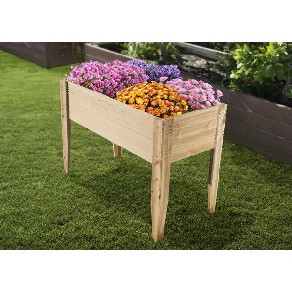 2 ft x 4 ft Cedar Raised Garden by Bond Manufacturing