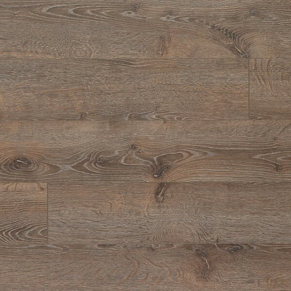 Elevae 6.13 x 54.34 x 12mm Oak Laminate Flooring in Terrain Oak by Quick-Step