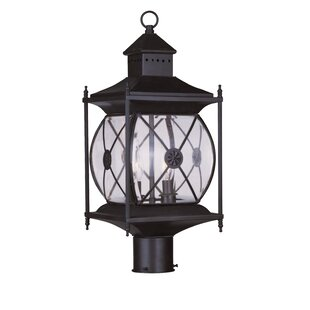 Contemporary Outdoor 2-Light Lantern Head By Darby Home Co Outdoor Lighting