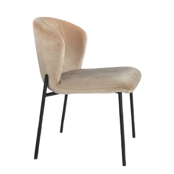 Clarisa Upholstered Dining Chair (Set of 2) by Ivy Bronx