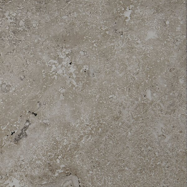 Newry 12 x 12 Porcelain Field Tile in Silverstone by Itona Tile