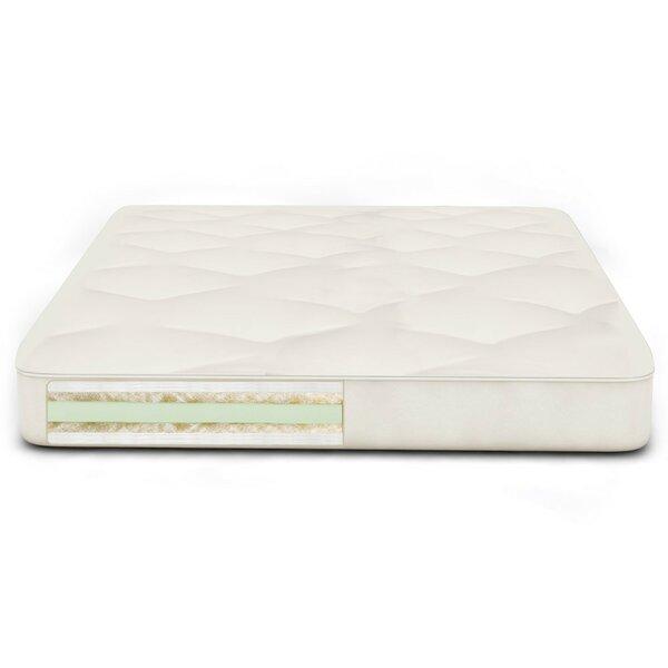 Back Care Plus 9 Soy Foam Futon Mattress by The Futon Shop
