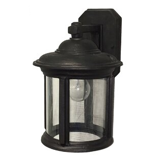 Shop for Perales 1-Light Outdoor Wall Lantern By Alcott Hill