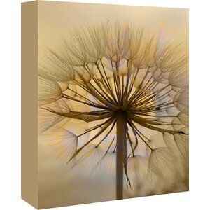 Dandelion Flower Nature Graphic Art on Wrapped Canvas by East Urban Home