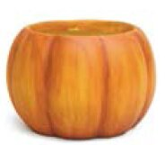 Pumpkin Painted Dolomite Pot Planter by August Grove