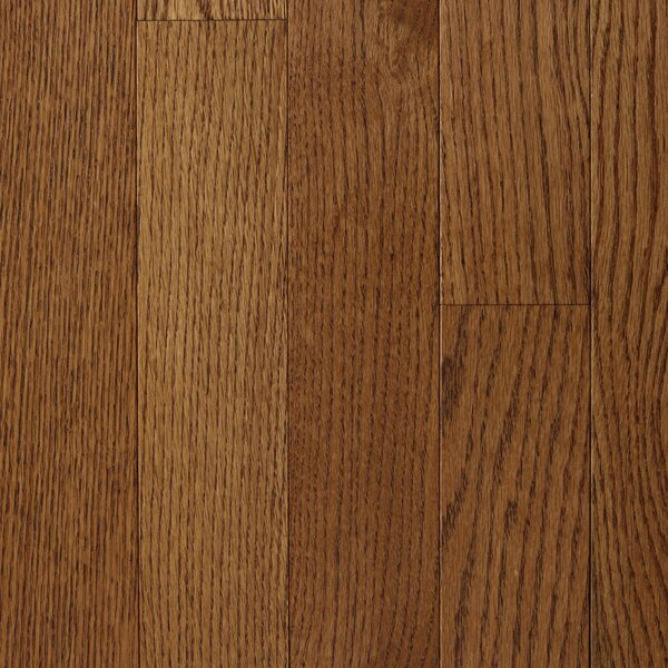 Varnazza 2-1/4 Solid Oak Hardwood Flooring in Chestnut by Branton Flooring Collection