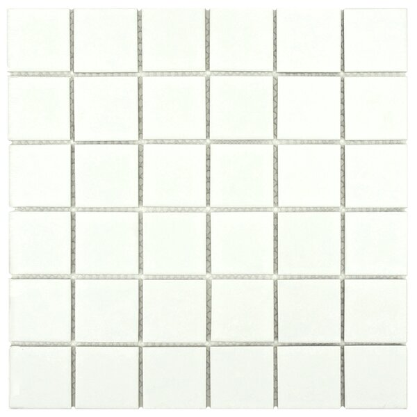 Dryas 2 x 2 Quad Porcelain Mosaic Tile in White by EliteTile