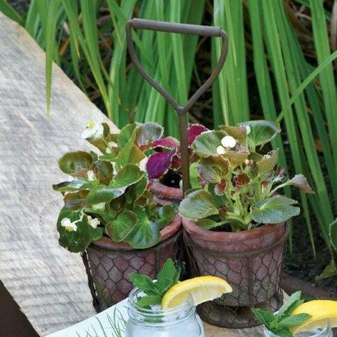 3-Piece Terracotta Pot Planter Set by Boston International