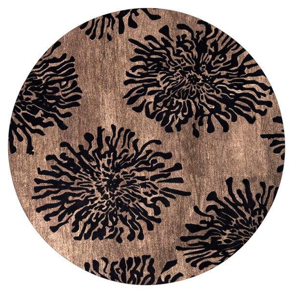 Parson Praline Area Rug by Ebern Designs