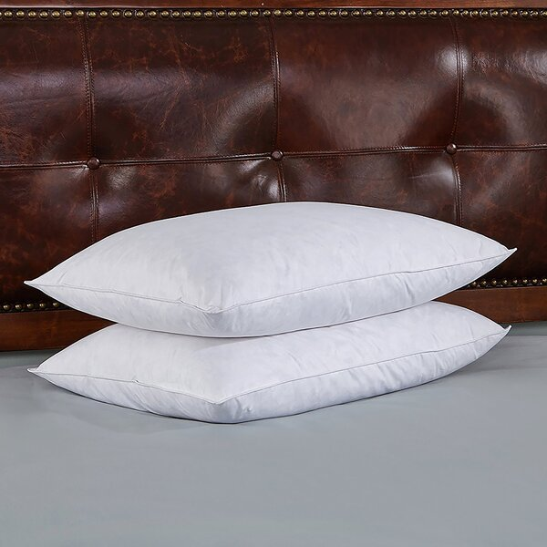 Damon Goose Medium Down and Feathers Pillow (Set of 2) by Alwyn Home