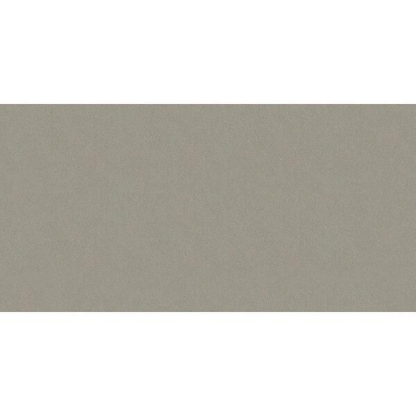Element 12 x 24 Porcelain Field Tile in Matte Wind Gray by Walkon Tile