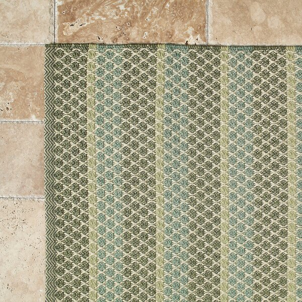Hayes Sage Indoor/Outdoor Rug by Birch Lane™