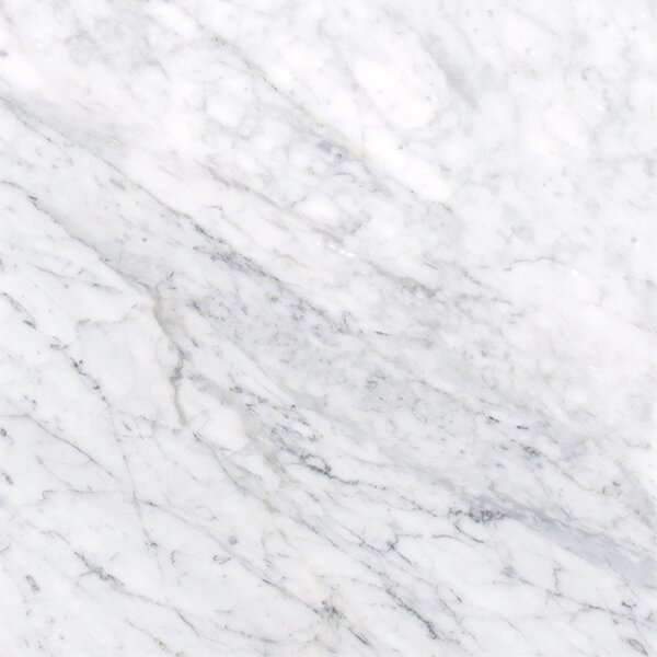 Carrara 12 x 12 Natural Stone Field Tile in White by MSI