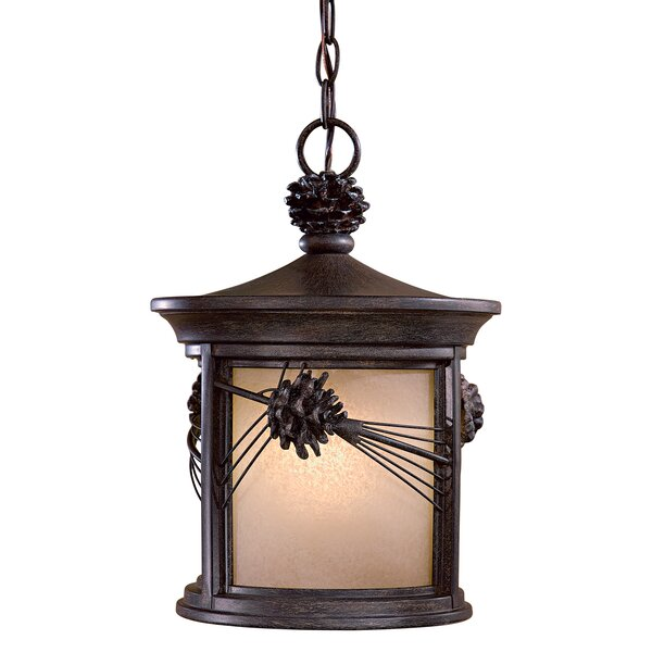 Abbey Lane 1-Light Outdoor Hanging Lantern by Great Outdoors by Minka