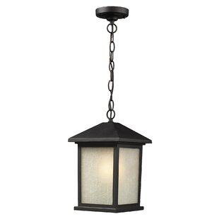 Buying Stevens 1-Light Outdoor Hanging Lantern By Andover Mills