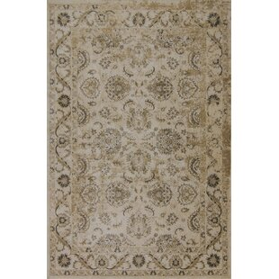 Inexpensive Bailor Ivory/Gold Area Rug By Astoria Grand