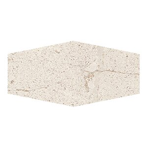 Costal Forest 9.5 x 19.25 Porcelain/Stone Field Tile in Beige by Kellani