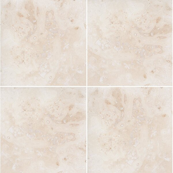 Classic 12 x 12 Travertine Field Tile in Honed Ivory by Parvatile