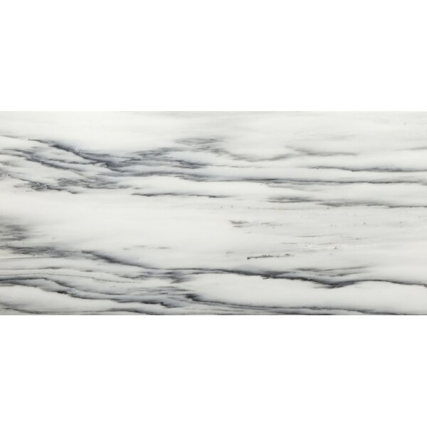 Vicenza 6 x 12 Marble Field Tile in Nite by Emser Tile