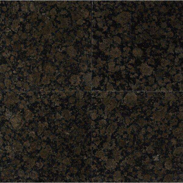 Baltic 12 x 12 Granite Field Tile in Brown by MSI