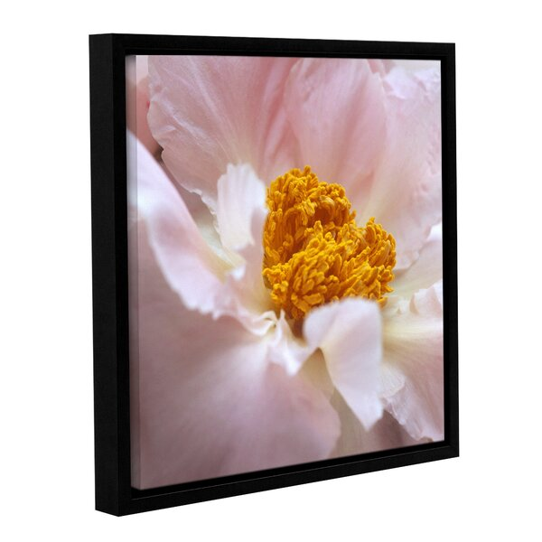 Pastel Peony by Kathy Yates Framed Photographic Print by ArtWall