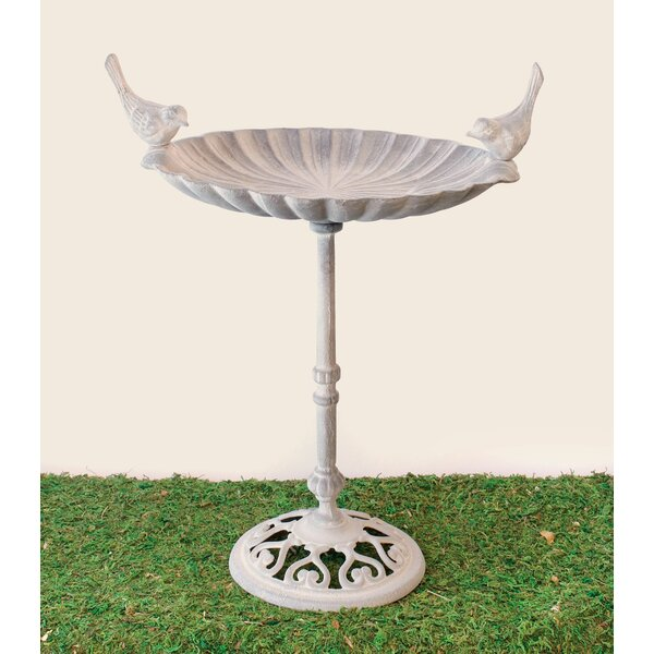 Bridgeton Bird Feeder Birdbath by Marshall Home Garden