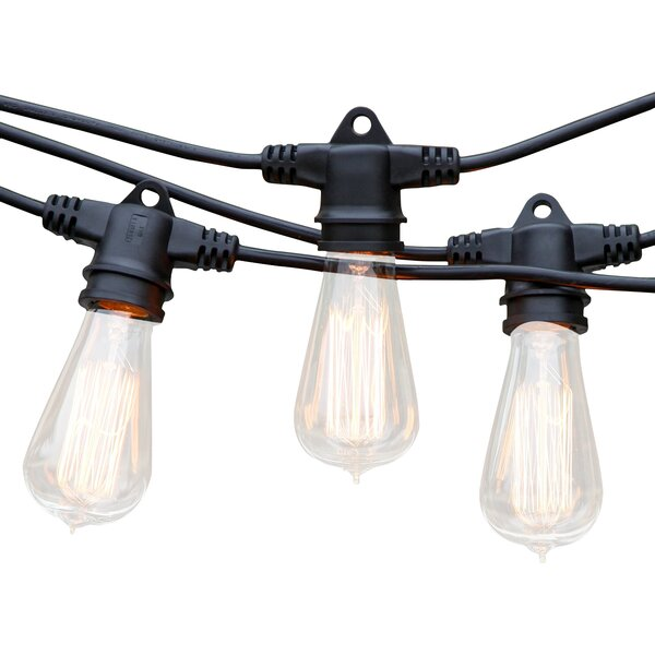 Ambience Pro Vintage 15-Light 48 ft. Globe String Lights by Brightech