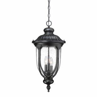 Angie 3-Light Outdoor Hanging Lantern By Fleur De Lis Living Outdoor Lighting