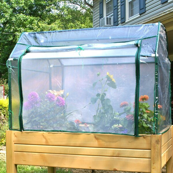 Eden 4 Ft. W x 3 Ft. D Mini Greenhouse with Enclosure by Riverstone Industries
