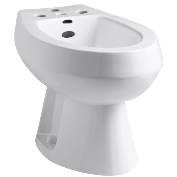 San Tropez Vertical Spray Bidet with 4 Faucet Holes by Kohler