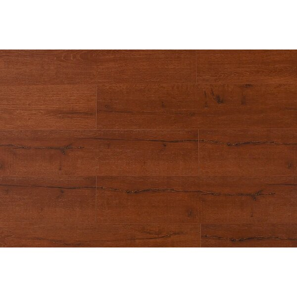 Jeramiah 7 x 48 x 12mm Oak Laminate Flooring in Cherry Wood by Serradon