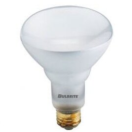 65W 120-Volt (2900K) Halogen Light Bulb (Set of 6) by Bulbrite Industries