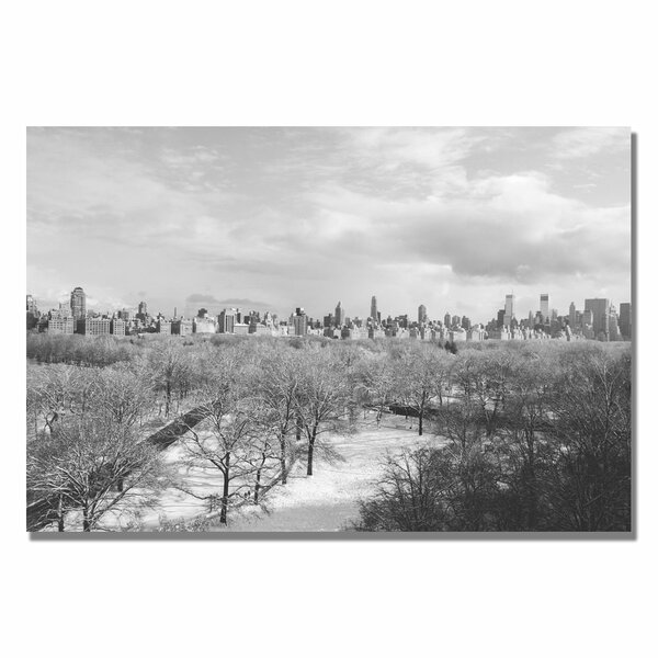 Snowy Park II by Ariane Moshayedi Photographic Print on Wrapped Canvas by Trademark Fine Art