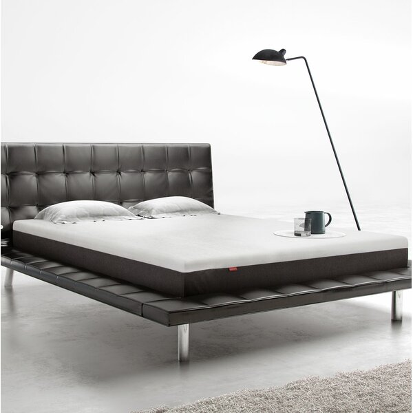 8 Ultra Plush Memory Foam Mattress by Modloft
