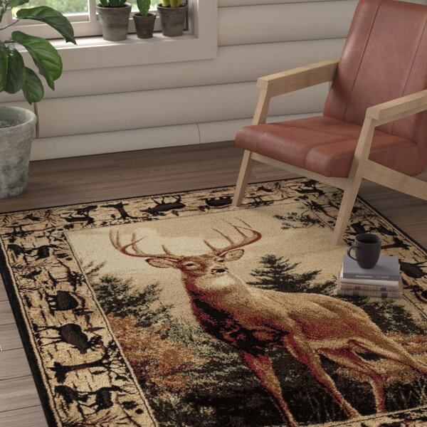 Pippen Regal Pride Brown/Beige/Green Area Rug by Loon Peak