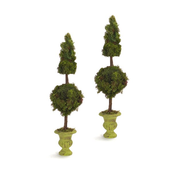 Moss Topiary in Pot (Set of 2) by Melrose International