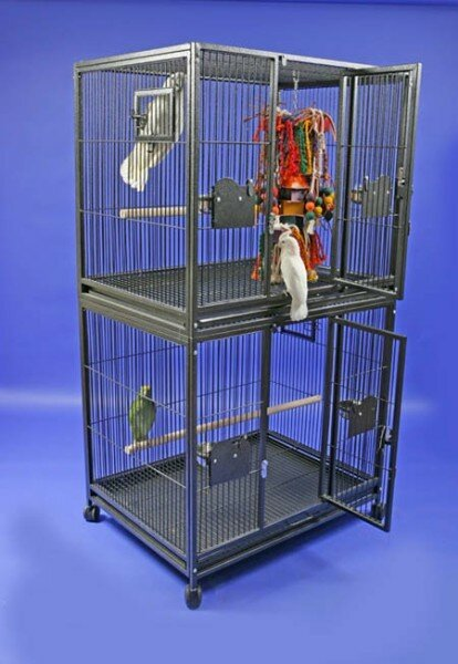 Double Bird Cage by A&E Cage Co.