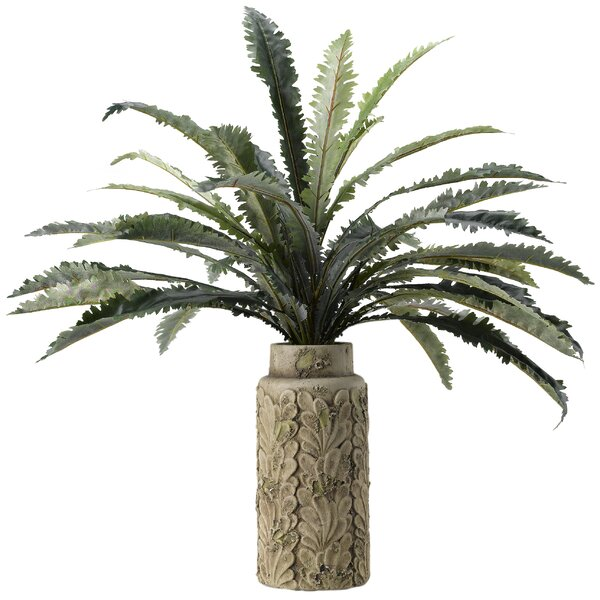 Nestle Fern Ceramic Floor Foliage Plant in Planter by Bloomsbury Market