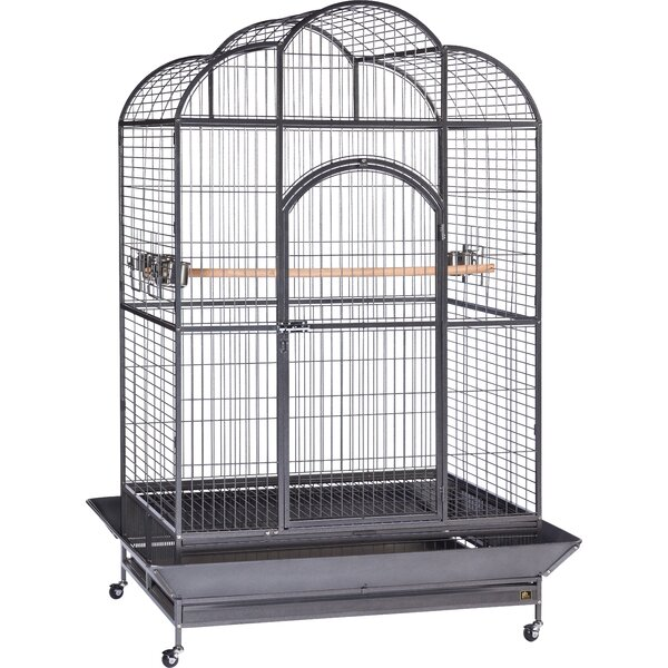 Backes Macaw Bird Cage by Tucker Murphy Pet