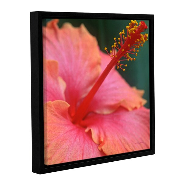 Tropical Beauty by Kathy Yates Framed Photographic Print by ArtWall