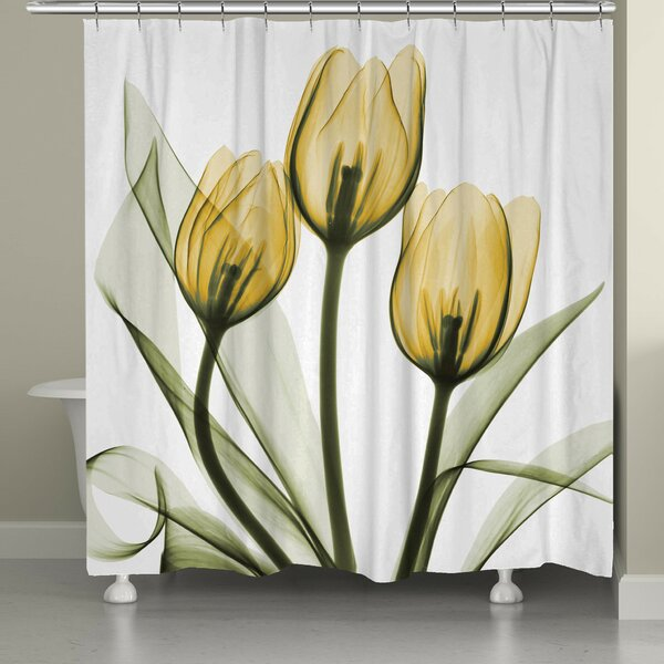 Digna Tulips Shower Curtain by Red Barrel Studio