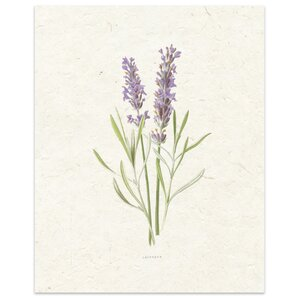 'Lavender' by Terri Ellis Painting Print in Tan by KAVKA DESIGNS
