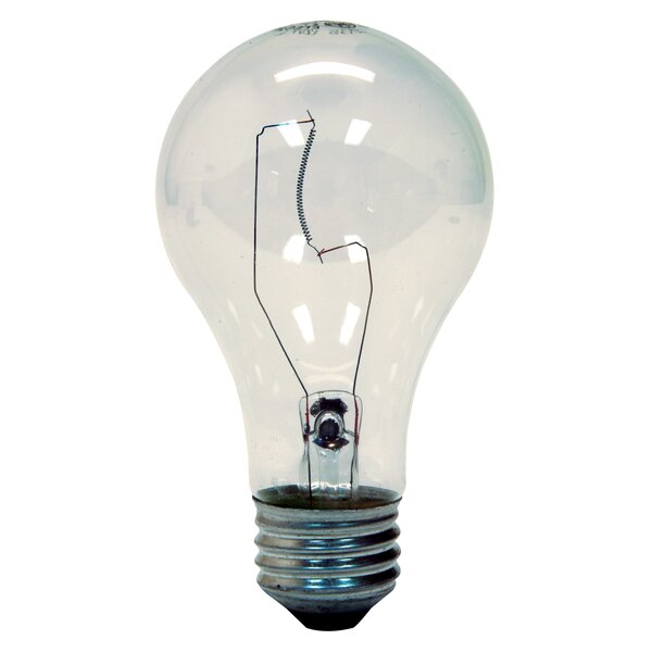 60W Light Bulb (Pack of 2) by GE
