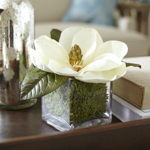Faux Magnolia Bloom Floral Arrangement by Birch Lane™