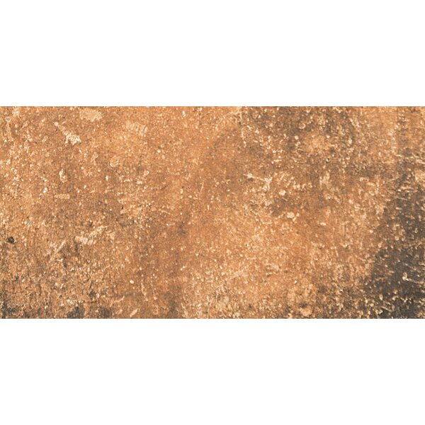 Newberry 8 x 16 Porcelain Field Tile in Cotto by Emser Tile