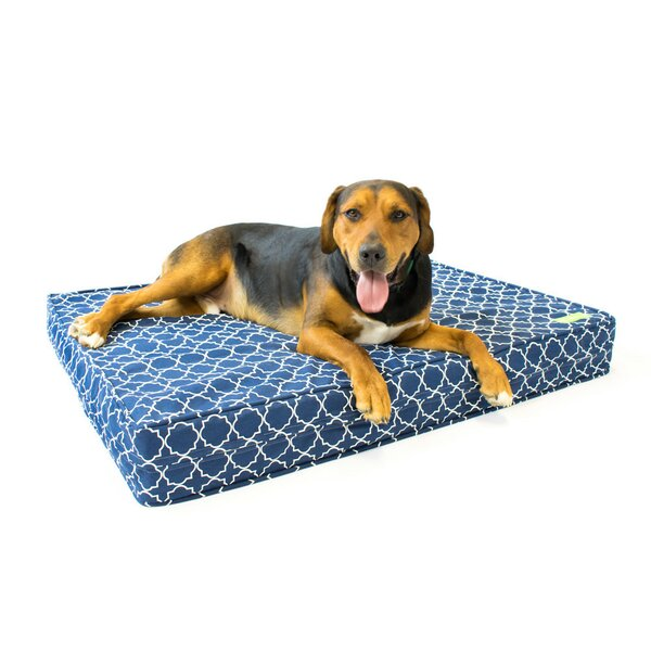 Clark Thick Soft/Firm Reversible Dog Bed by Tucker Murphy Pet