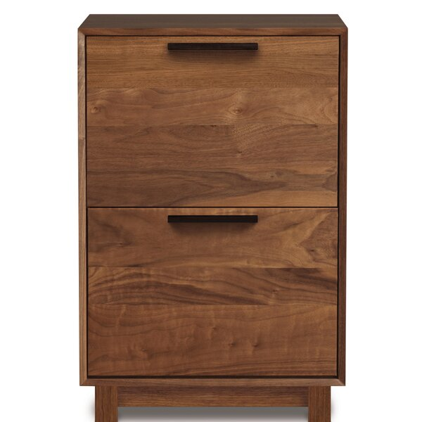 Linear Office Storage 2 Drawer Vertical Filing Cabinet by Copeland Furniture