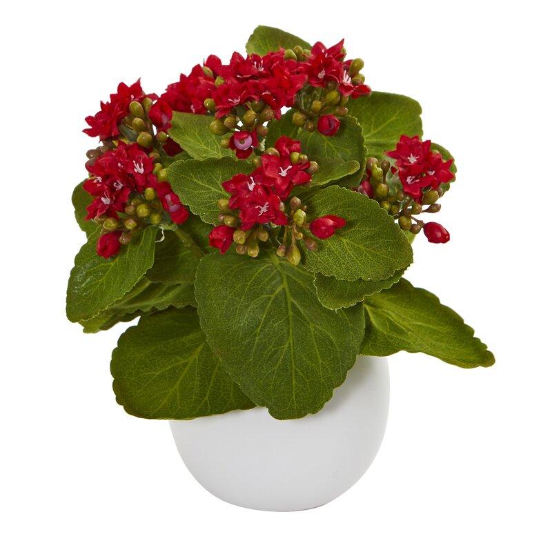 Winston Porter Artificial Kalanchoe Plant In Decorative Vase Wayfair