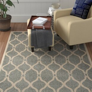 Best Reviews Molly Gray Area Rug By Winston Porter
